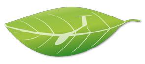 VitorlazoNB logo_cmyk